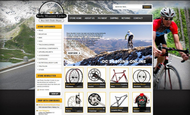 How much does a bike shop custom eBay store design cost