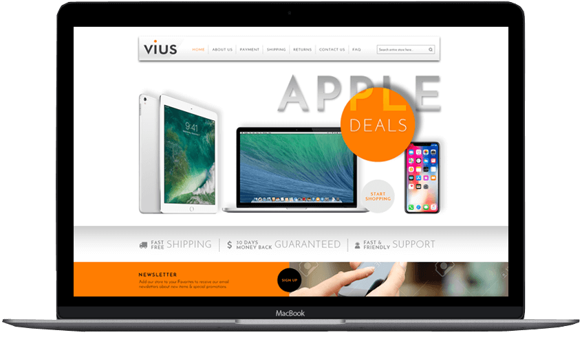Vius custom ebay store and template design